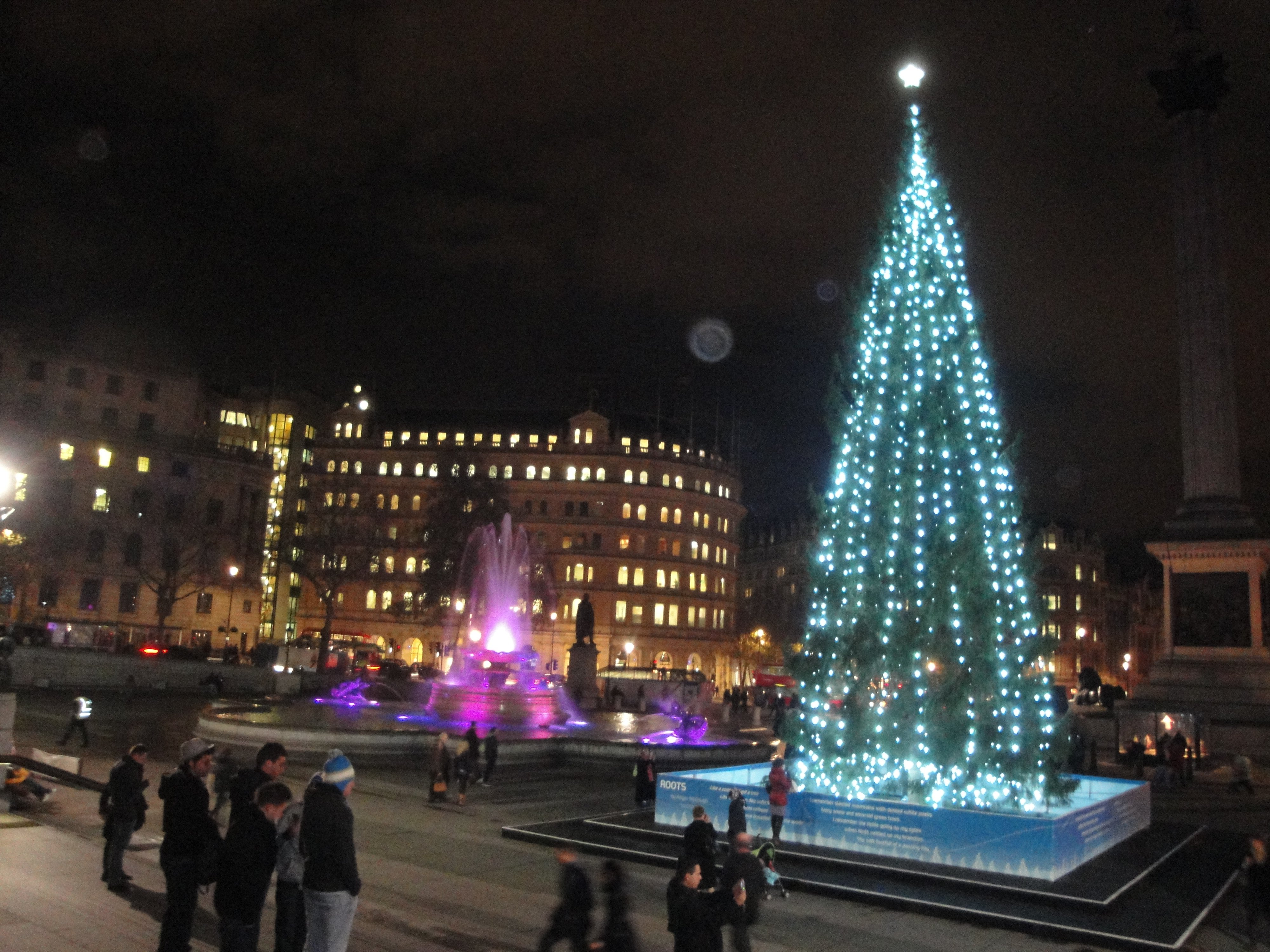 Trafalgar_Square_Christmas_tree_2011_at_night